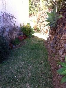jardin-255x300